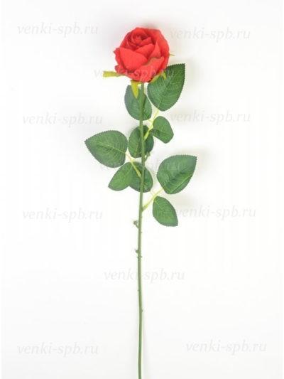 Бутон розы Битондо - Фото 2 | Компания «Венок»