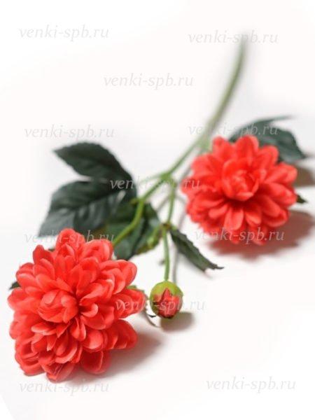 Георгины на ветке Монига- красный - Фото 1   Компания «Венок»