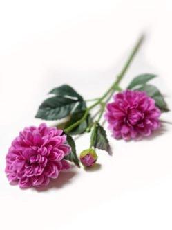 Купить цветы на кладбище в Санкт-Петербурге