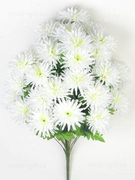 Букет хризантемы 36 соцветий — белый - Фото 1   Компания «Венок»