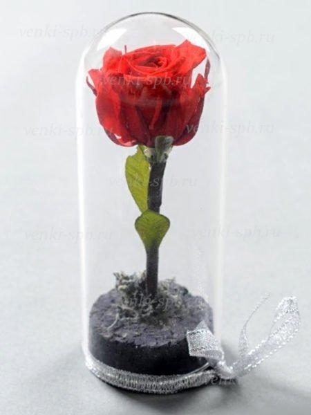 Искусственные цветы Роза в колбе 15 см с ленточкой - Фото 1 | Компания «Венок»