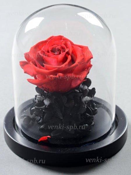 Роза в колбе 15 см — алая - Фото 1 | Компания «Венок»