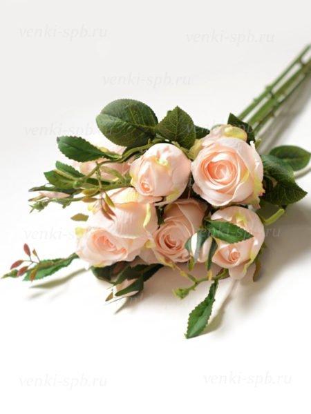 Букет бутонов роз МАШАМ (7 веток) нежно-персиковый - Фото 1 | Компания «Венок»