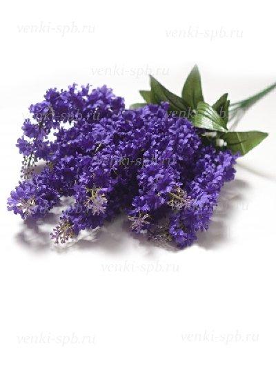 Букет сирени Лонгхоул — фиолетовый - Фото 1 | Компания «Венок»