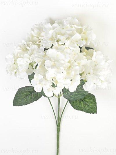 Букет гортензии ЭЙРТ – белый - Фото 1   Компания «Венок»