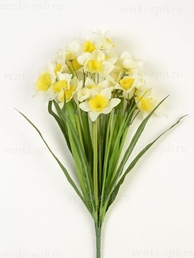 ТАКЕР букет нарциссов бело-желтый - Фото 2 | Компания «Венок»