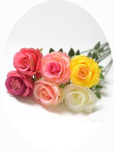 Одиночный бутон розы АЛЕЦЬЕ микс - Фото 1 | Компания «Венок»