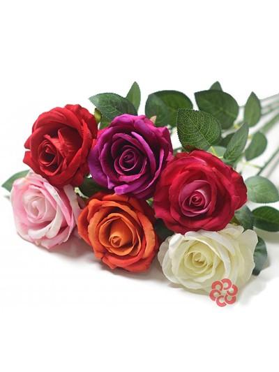 Одиночный бутон розы Гаето бархатный микс - Фото 1 | Компания «Венок»