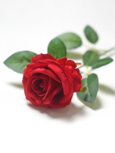 Одиночный бутон розы Гаето бархатный микс - Фото 2 | Компания «Венок»