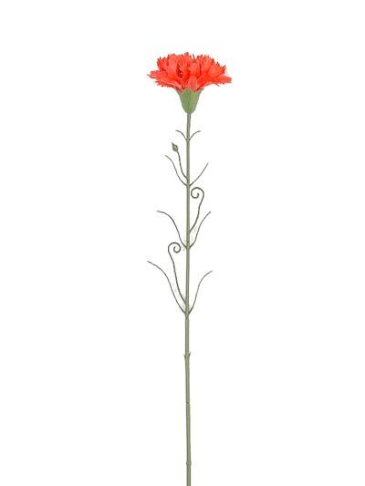 ЭДВИДЖ Одиночная гвоздика пластиковая (красная и белая) - Фото 1 | Компания «Венок»